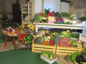legumes doris 1